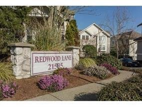 R2031446 - 54 21535 88 AVENUE, Walnut Grove, Langley, BC - Townhouse