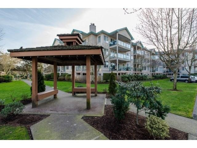 R2038708 - 207 20433 53RD AVENUE, Langley City, Langley, BC - Apartment Unit