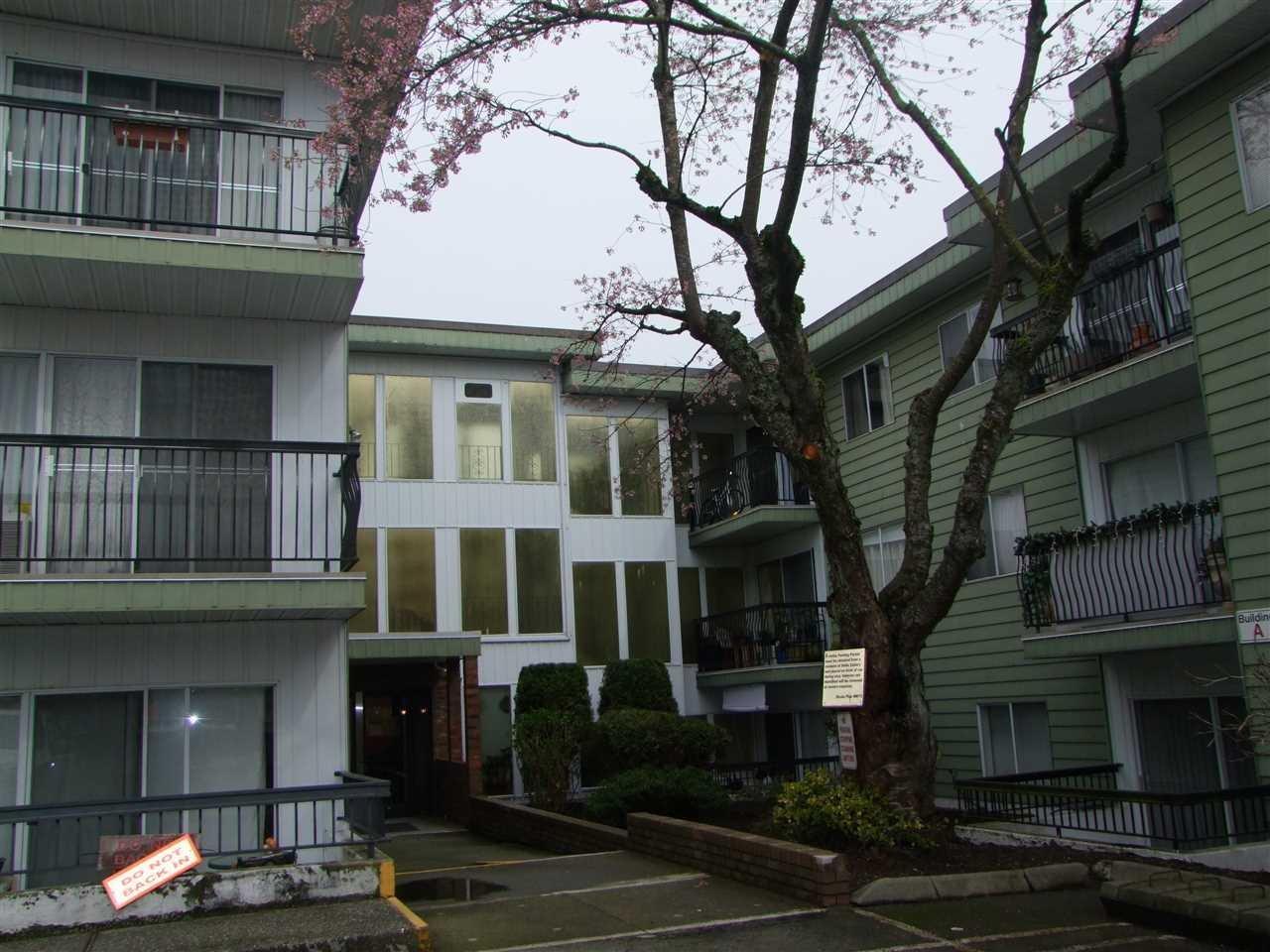 R2046216 - 362B 8635 120 STREET, Annieville, Delta, BC - Apartment Unit