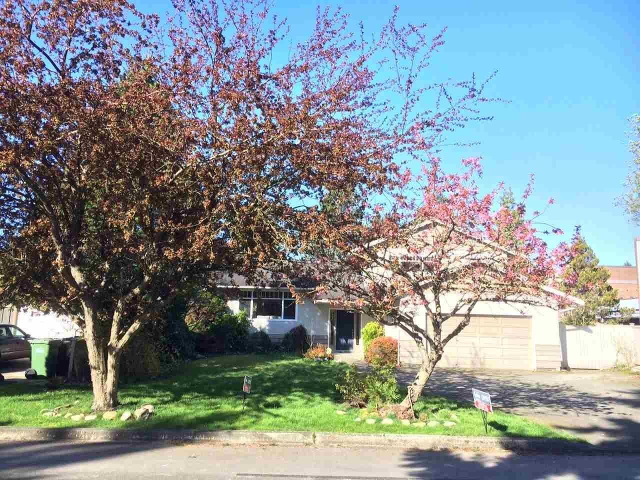 R2047073 - 10311 2ND AVENUE, Steveston North, Richmond, BC - House/Single Family