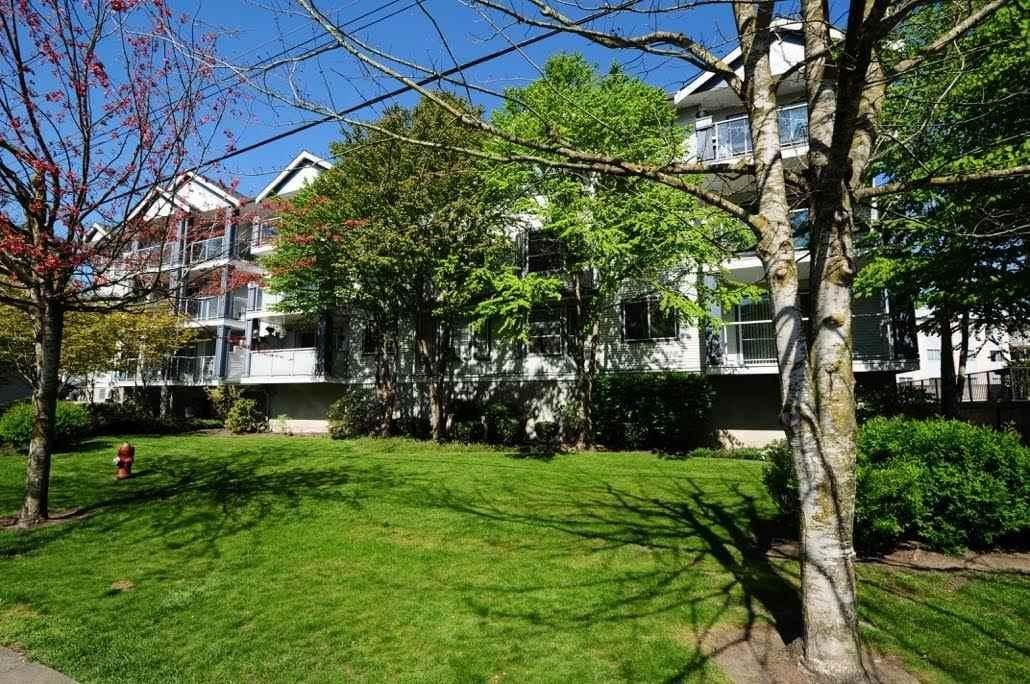 R2047731 - 104 20177 54A AVENUE, Langley City, Langley, BC - Apartment Unit