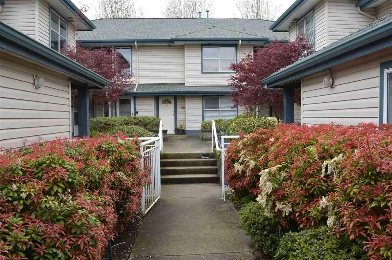 R2053253 - 17 5664 208 STREET, Langley City, Langley, BC - Townhouse