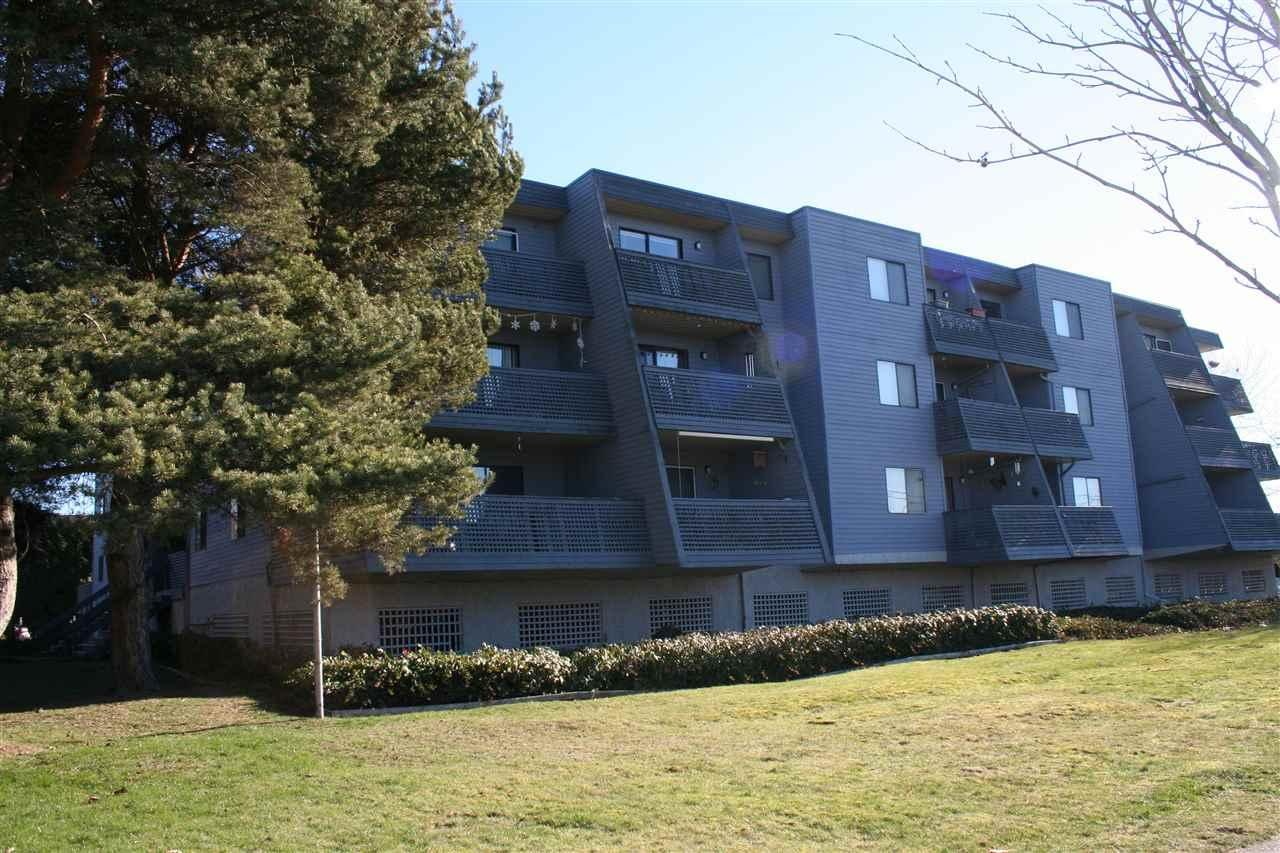 R2059336 - 203 17661 58A AVENUE, Cloverdale BC, Surrey, BC - Apartment Unit
