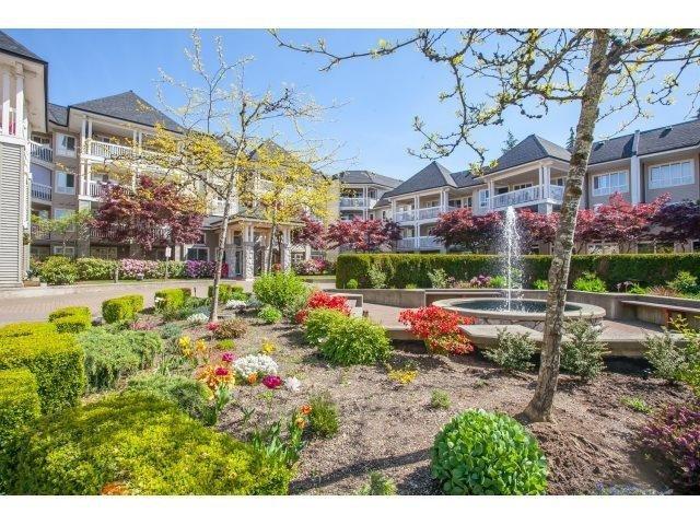 R2059759 - 215 22022 49 AVENUE, Murrayville, Langley, BC - Apartment Unit