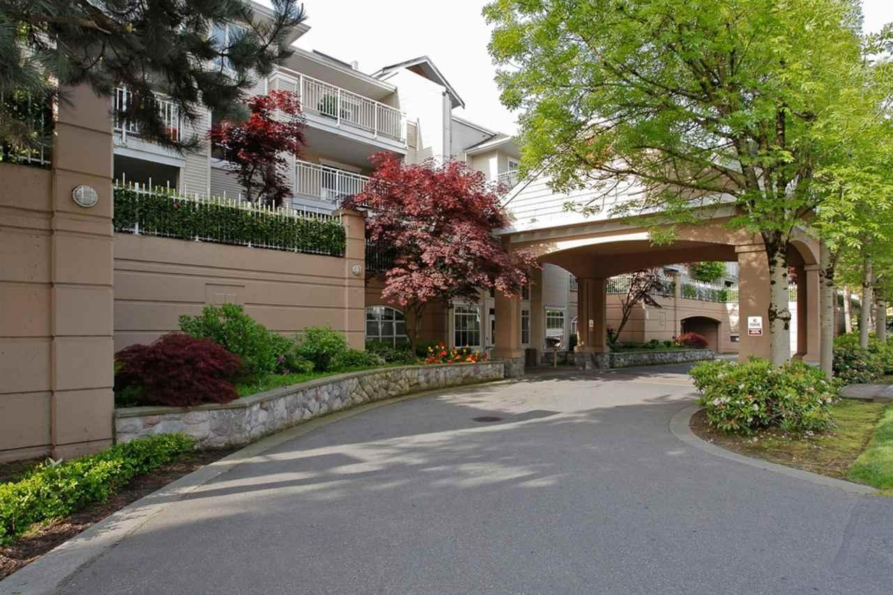 R2060675 - 115 19750 64 AVENUE, Willoughby Heights, Langley, BC - Apartment Unit
