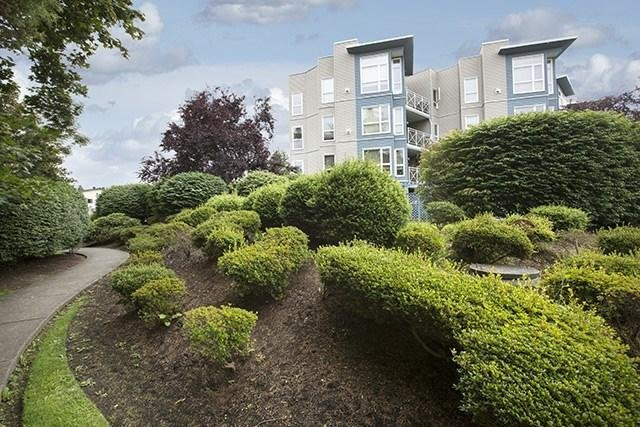 R2080669 - 210 20245 53 AVENUE, Langley City, Langley, BC - Apartment Unit