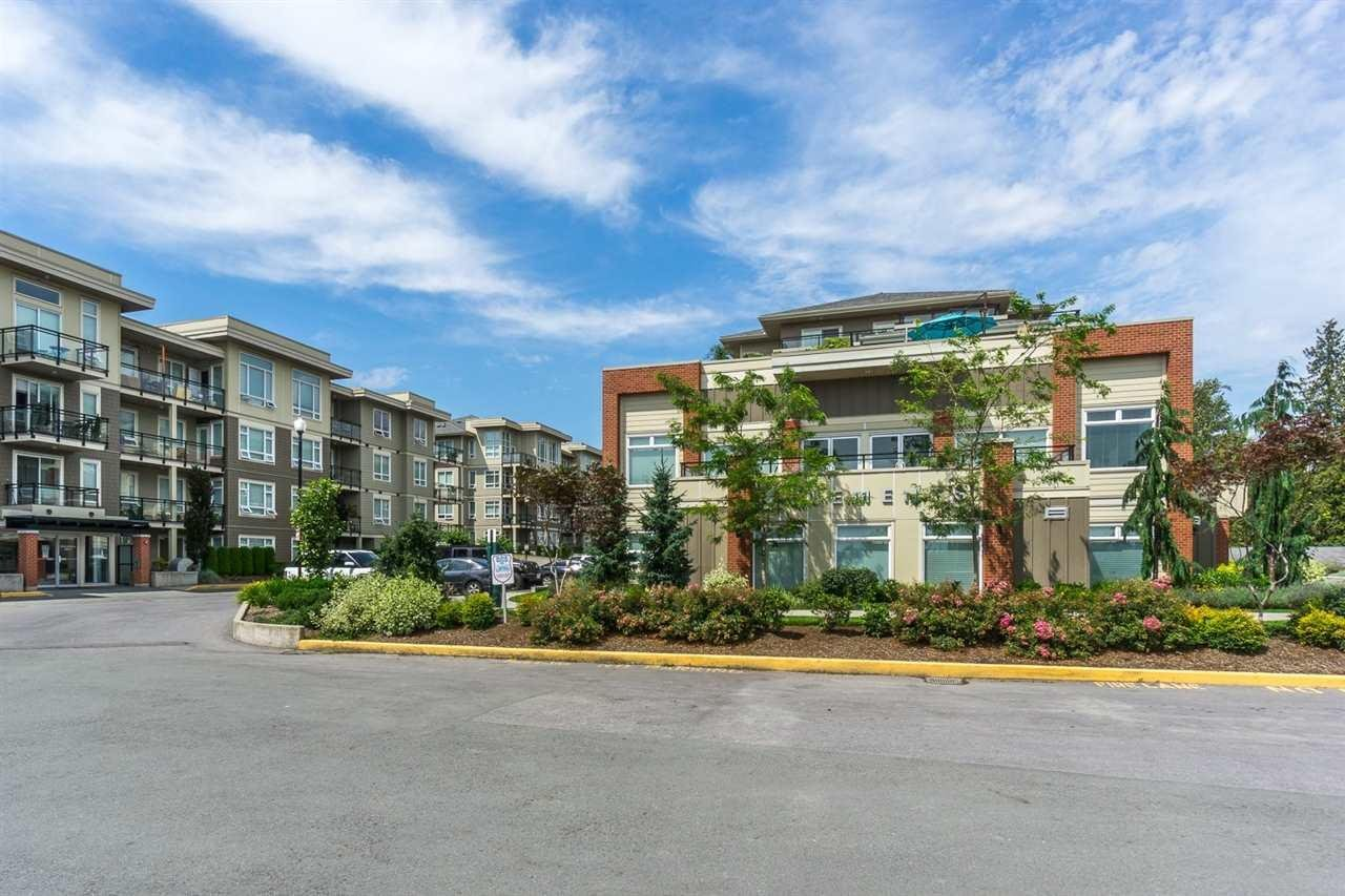 R2091809 - A210 20211 66 AVENUE, Willoughby Heights, Langley, BC - Apartment Unit