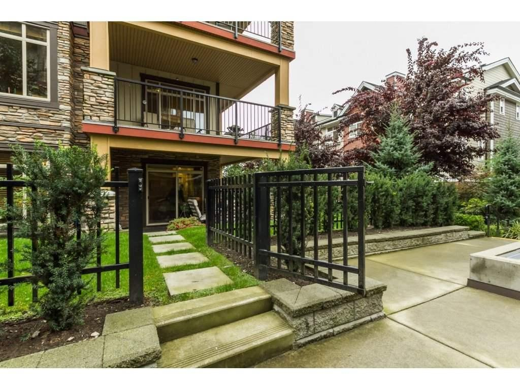 R2106149 - 104 8328 207A STREET, Willoughby Heights, Langley, BC - Apartment Unit