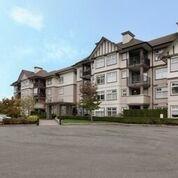 R2113167 - 248 27358 32 AVENUE, Aldergrove Langley, Langley, BC - Apartment Unit