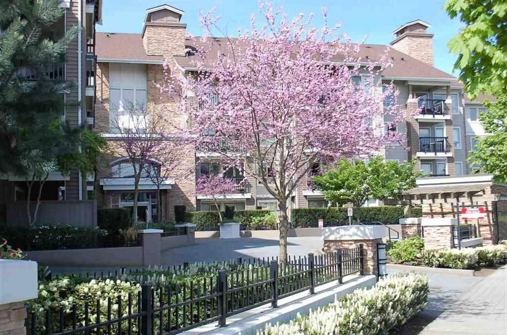 R2134917 - 228 8915 202 STREET, Walnut Grove, Langley, BC - Apartment Unit