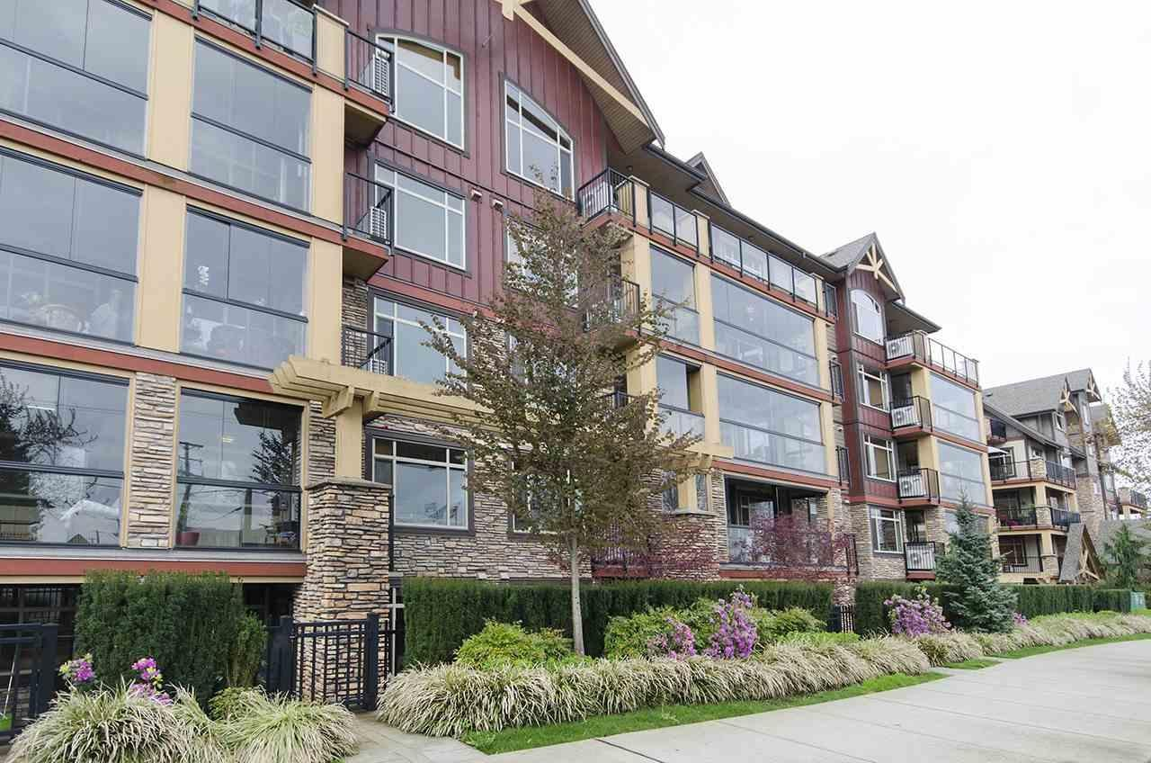 R2159968 - 187 8288 207A STREET, Willoughby Heights, Langley, BC - Apartment Unit